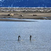 Bore Tide Standup-Paddeling_Turnagain Arm-roy neese